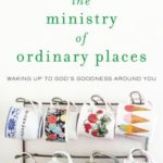 The Ministry of Ordinary Places Review
