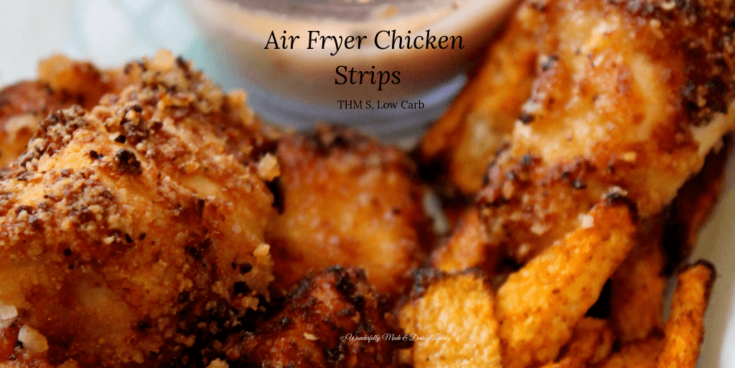 Air Fryer Chicken Strips {THM S, Low Carb}