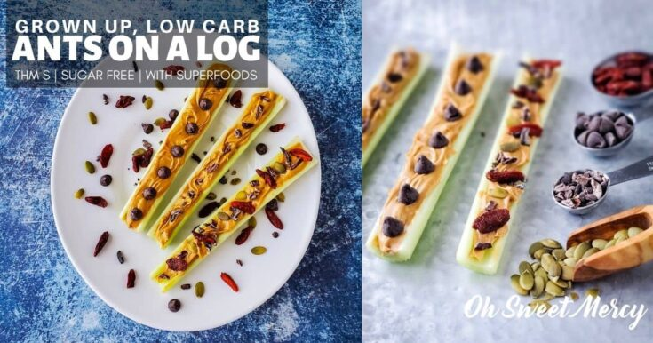 Ants On A Log For Grown Ups | Low Carb, THM S