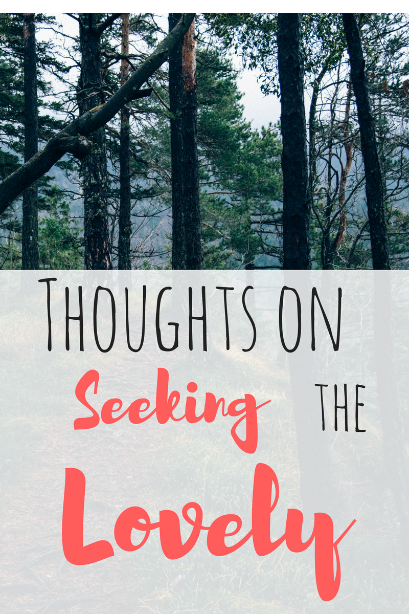 Thoughts on Seeking the Lovely